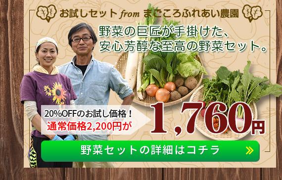 「まごころふれあい農園」野菜セットの詳細はコチラ