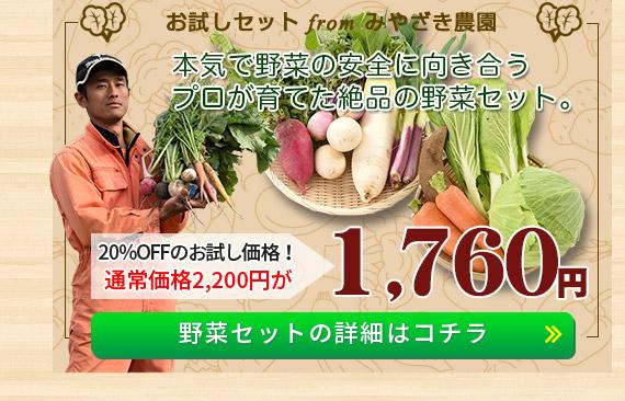 「信州松代みやざき農園」野菜セットの詳細はコチラ