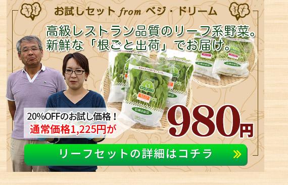 「ベジ・ドリーム」野菜セットの詳細はコチラ