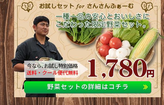 「さんさんふぁーむ」野菜セットの詳細はコチラ