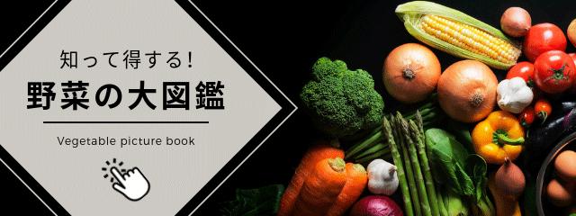野菜図鑑イメージ